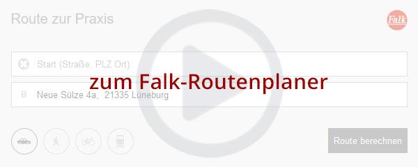 Preview Falk Routenplaner